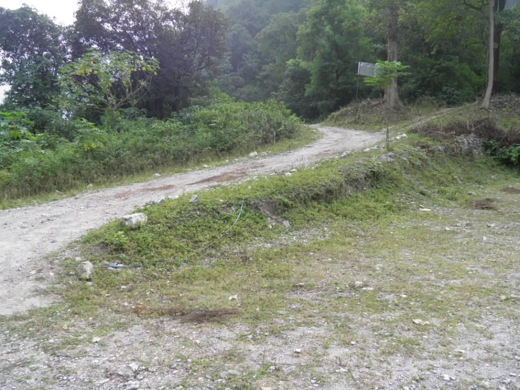 Reaching Jungle Camp, Rishikesh