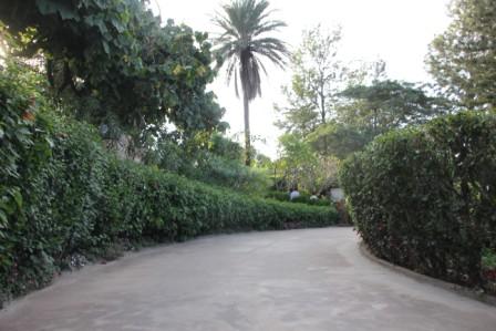 Peace Park 2