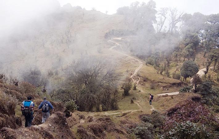 Singalila Kanchenjunga Trek