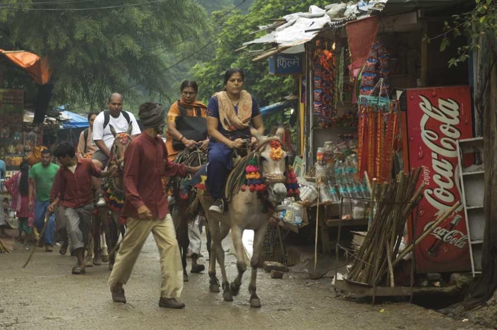 Vaishno Devi Temple Pony Ride
