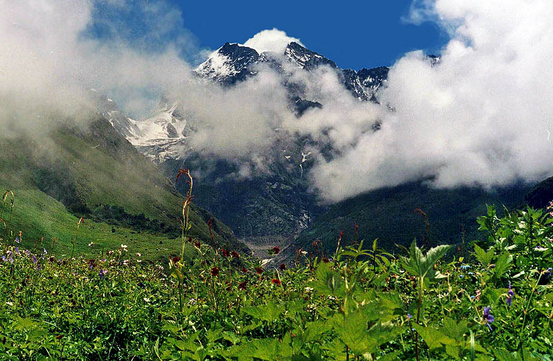 Valley of Flowers Trek in Uttarakhand