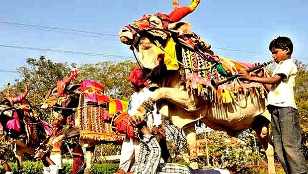Shilparamam Festival