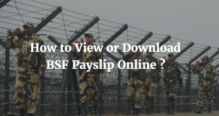 How to View or Download BSF Payslip Online