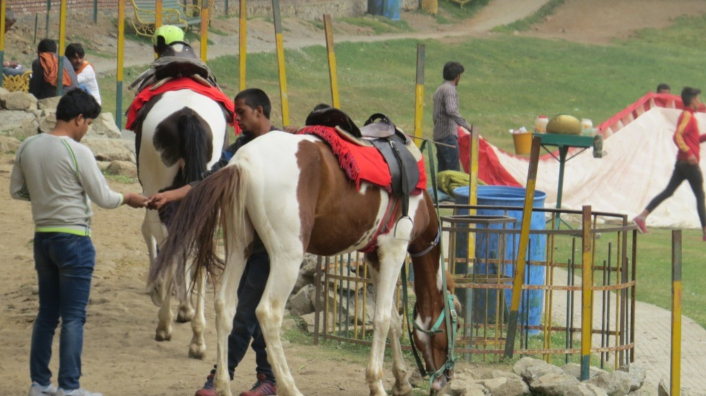 Horse Riding at Khajjiar