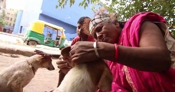Pratima Devi Dog Lady Delhi