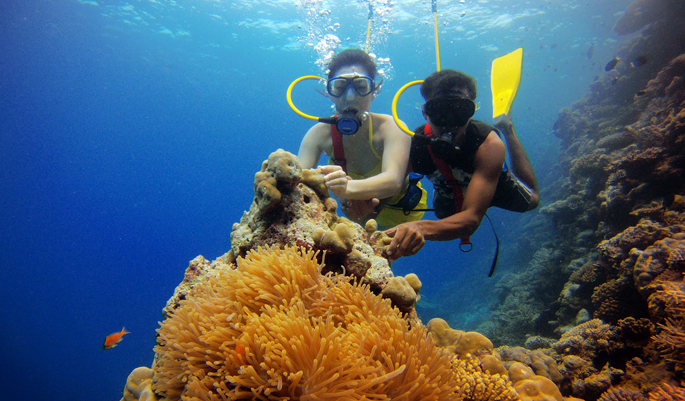Scuba Diving in Bangaram Island