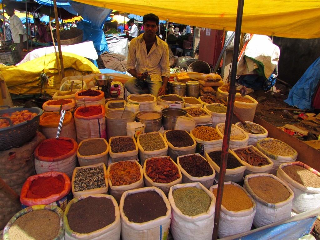 fewikwik and the goa market