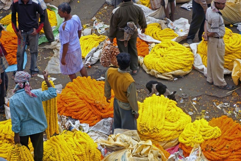 Mallikghat Flower Market, Kolkata