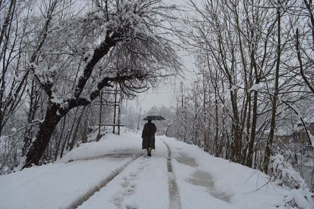 Pulwama Snowfall