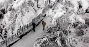 Top 10 Places in Himachal Pradesh for Snowfall