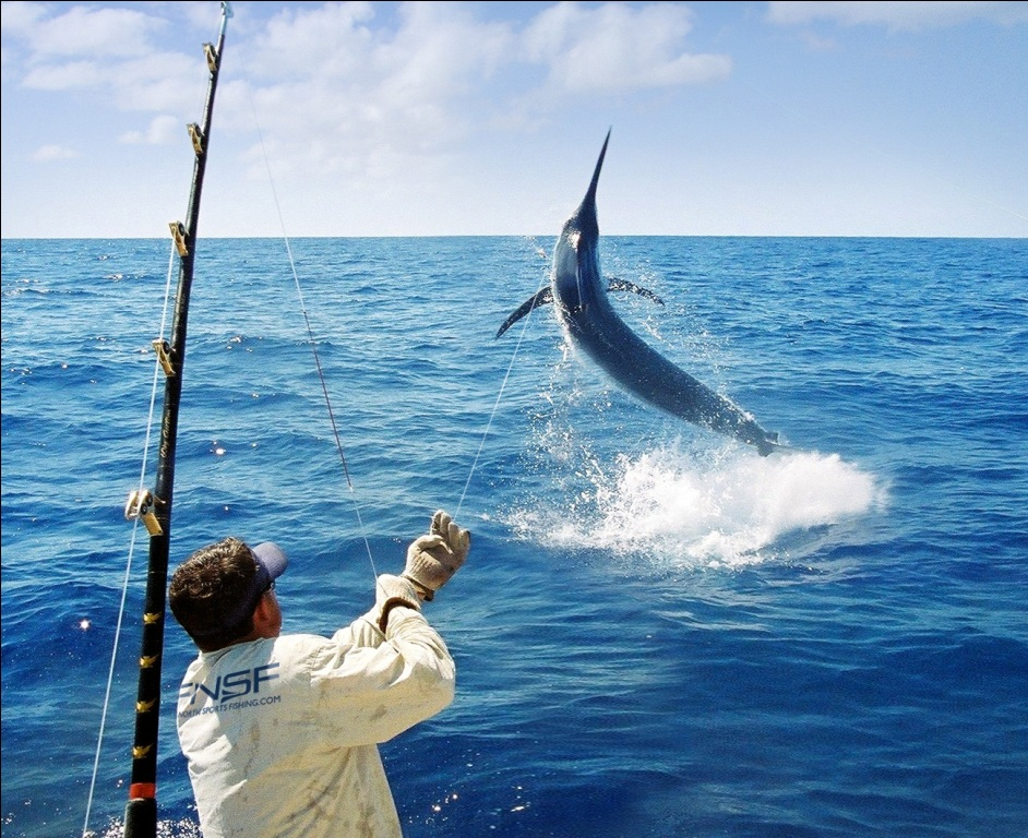 Sport Fishing in Andaman and Nicobar Islands