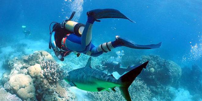 Top 10 Adventure Sports Activities in Goa
