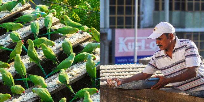 Joseph Sekar India's Birdman