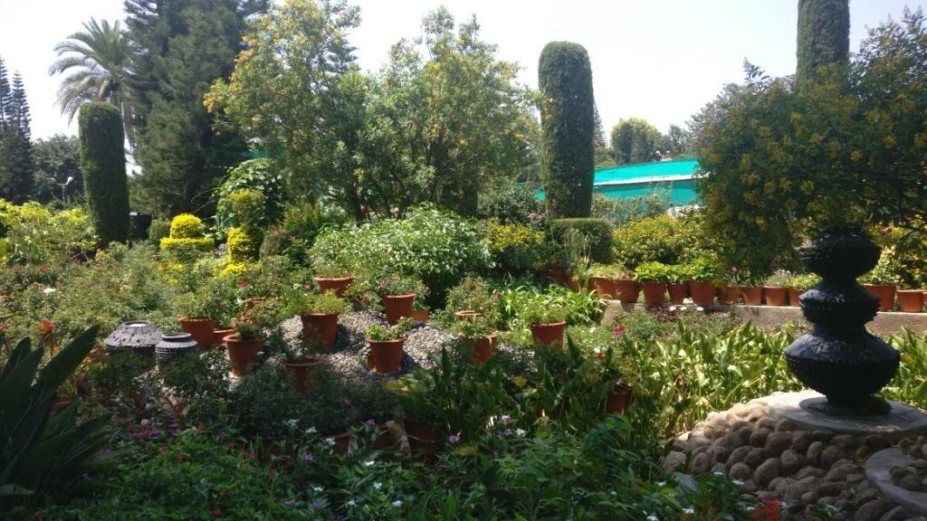 Peace Park(Brahmakumaris), Mount Abu