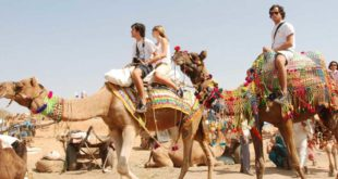 Visiting Pushkar Camel Fair A Happy Affair with the City