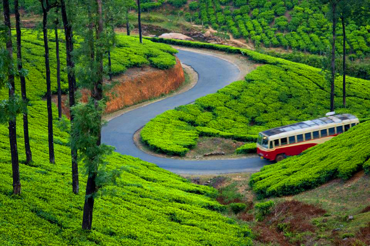Top Must Visit Places In Munnar To Enjoy Its Serenity And Beauty