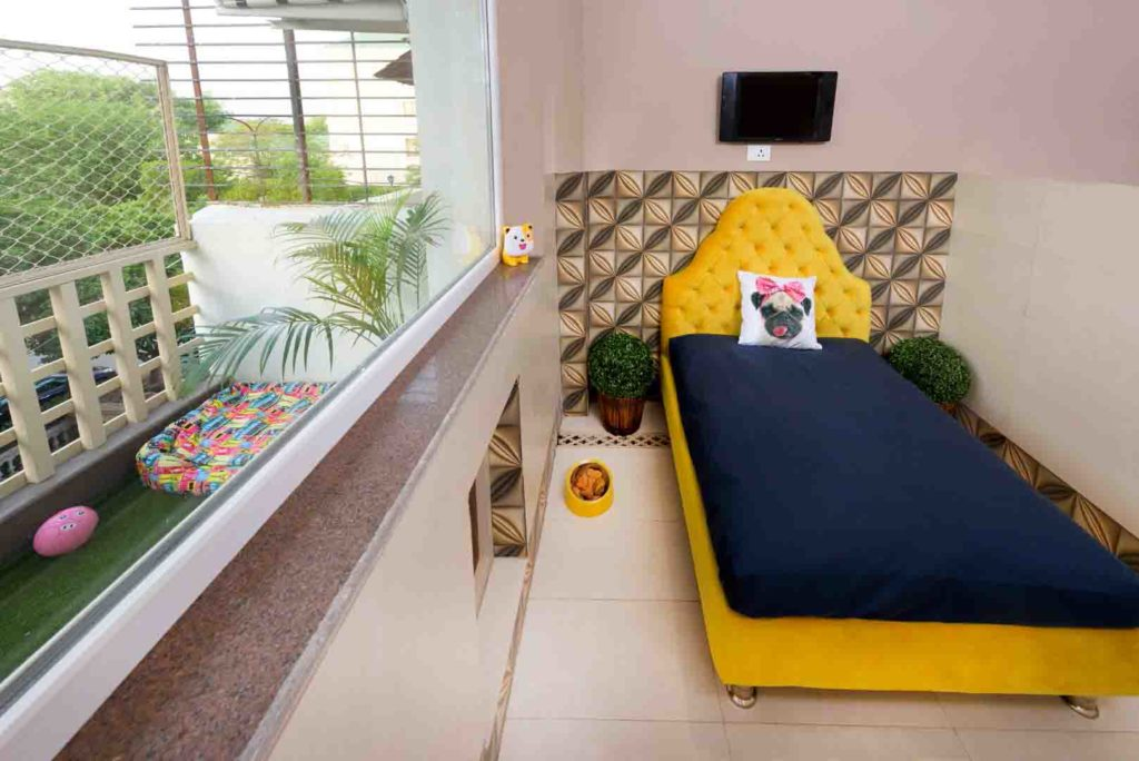 Cretterati, Gurgaon - India's first and Only Dog Hotel