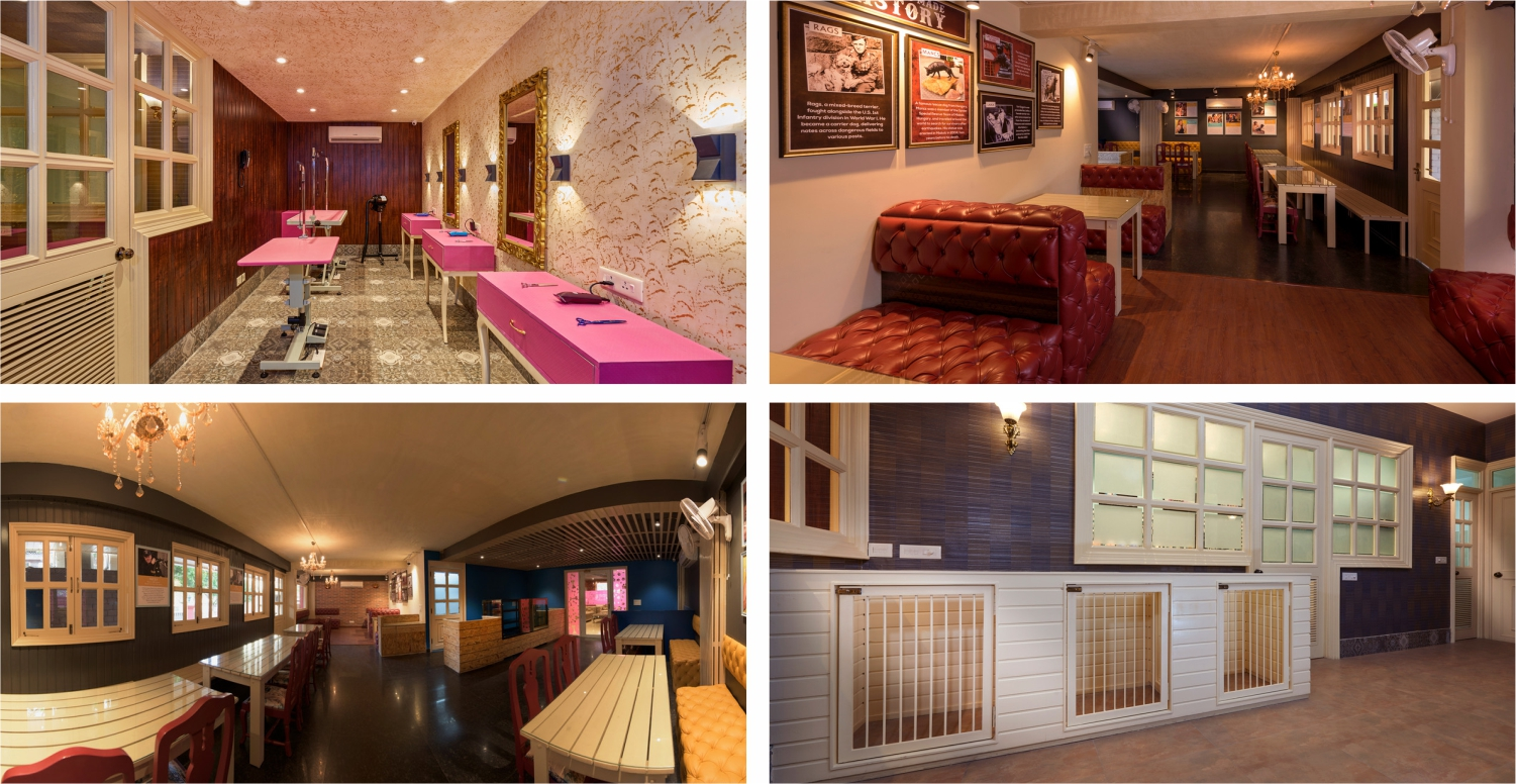 Cretterati, Gurgaon – India's first and Only Dog Hotel