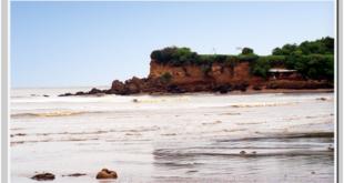 Experience Bountiful Nature in Gopnath Beach