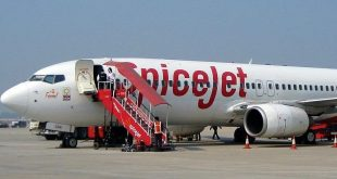SpiceJet pilot tests positive for coronavirus