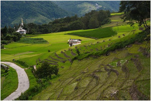 Western Arunachal Pradesh