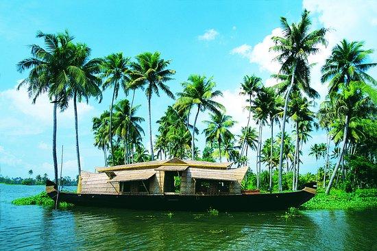 Backwater beauty
